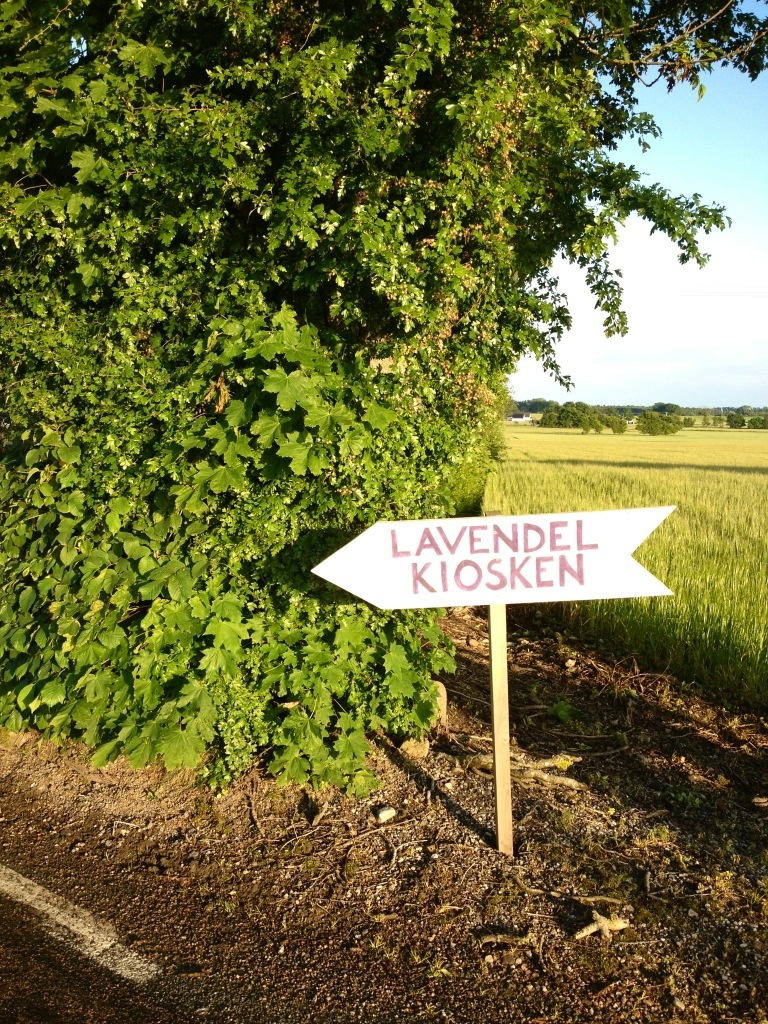 Lavendelkiost utanför Skillinge