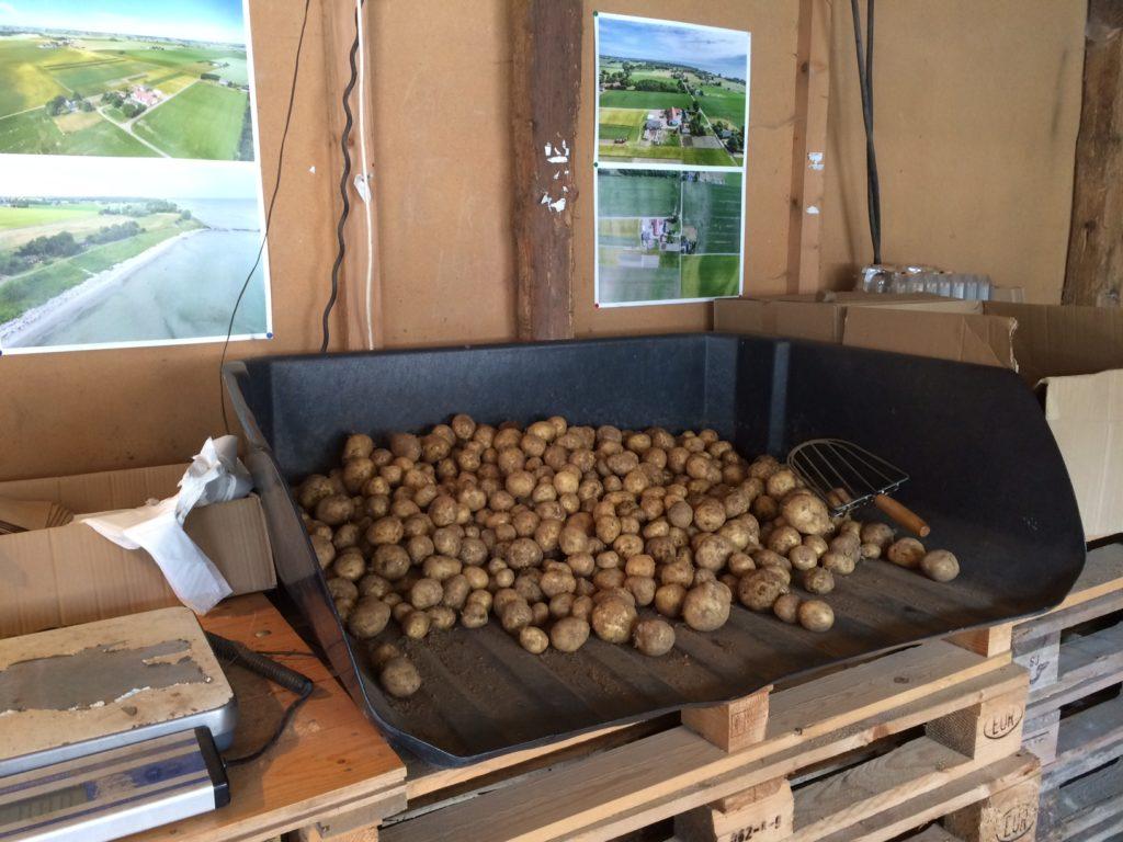 potatis örnahusens gårdsb